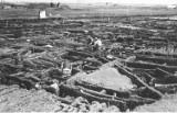 Tak wyglądał Biskupin przed drugą wojną światową. Czarno-białe fotografie pokazują skalę znaleziska [zdjęcia]