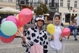 Gniezno. Pobili raka w Gnieźnie! Festyn dla Weroniki Strachanowskiej! [FOTO]
