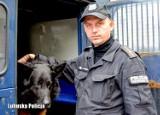 Homar odszedł na wieczną służbę. Owczarek niemiecki, pies patrolowo-tropiący służył w policji w Gubinie przez 10 lat