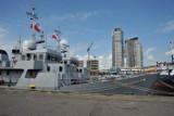 Pięć szkolnych okrętów Marynarki Francuskiej przypłynęło do Gdyni [FOTO]