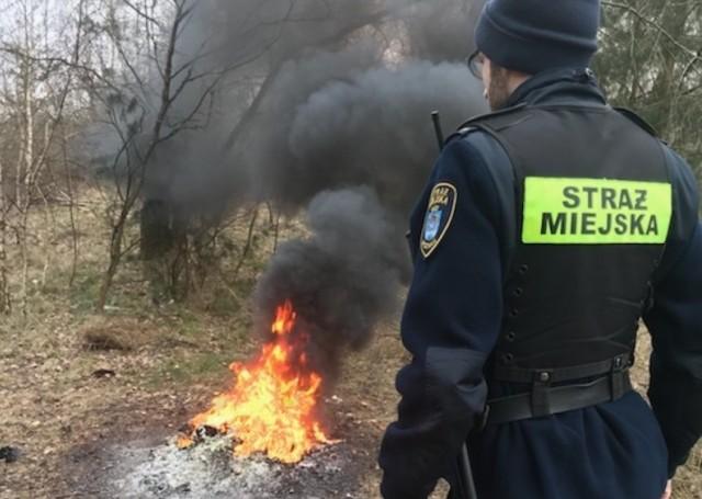 Okazało się, że na terenie pogotowia społecznego robiono wiosenne porządki i przy okazji rozpalono ognisko