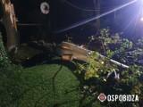 Obidza. Mocno wiało. Drzewo przewróciło się na dach domu i linię energetyczną [ZDJĘCIA]