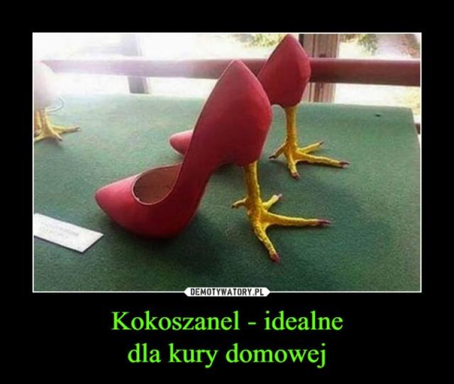 Najdziwniejsze buty świata. Musicie je zobaczyć! (ZDJĘCIA
