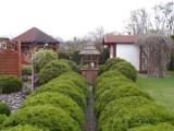 W Międzyrzeczu mamy najpiękniejsze ogródki działkowe w regionie? Kiedy się na nie patrzy, to aż dech w piersi zapiera…