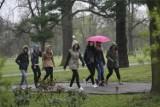 Pogoda w Łodzi i regionie na 22 października. Sprawdź! Prognoza pogody, ochłodzenie i deszcz w poniedziałek