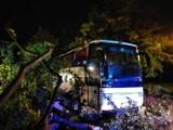 Nocna wichura na Pomorzu 23/24.09.2021 r. Połamane drzewa, zablokowane drogi. Zdjęcia