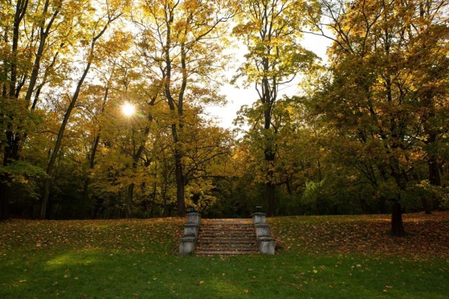 Park Bednarskiego na krakowskim Starym Podgórzu