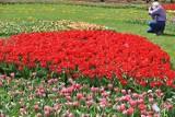 1 kwietnia można wybrać się na pierwszy wiosenny spacer do Ogrodu Botanicznego