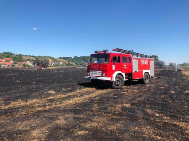 Pożar w okolicach miejscowości Chyże w gminie Krosno Odrzańskie.