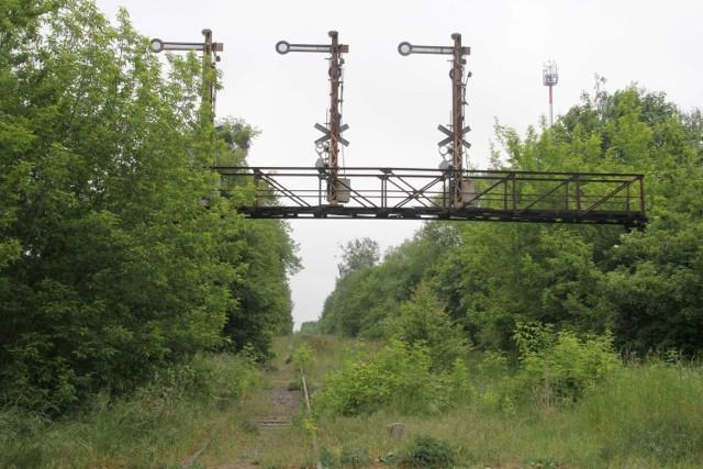 Co dalej z przywróceniem połączeń kolejowych do powiatu międzychodzkiego? Linia kolejowa 368 przez Ostroróg czy może przez Wronki? (zdjęcie ilustracyjne).