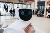 Roboty pozbawią nas pracy? W tych branżach jest to możliwe