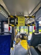 Kraków. Z autobusów i tramwajów znikają wydzielone strefy
