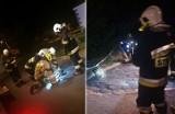 Wierzbica: Dzikie zwierzę atakowało ludzi. Interweniowała straż pożarna i policja. Zobacz zdjęcia