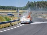 Pod Goleniowem spłonął samochód. Honda w ogniu