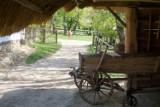 Przenieś się w czasie do sielankowej, staropolskiej wsi! Muzeum Wsi Lubelskiej przyciąga turystów historią, przyrodą i wyjątkowym klimatem