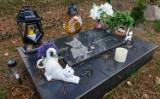 Cmentarz dla zwierząt w Szymanowie koło Wrocławia i inne. Są groby zwierząt, anioły, znicze, modlitwy do Boga i żywe kwiaty [ZDJĘCIA]