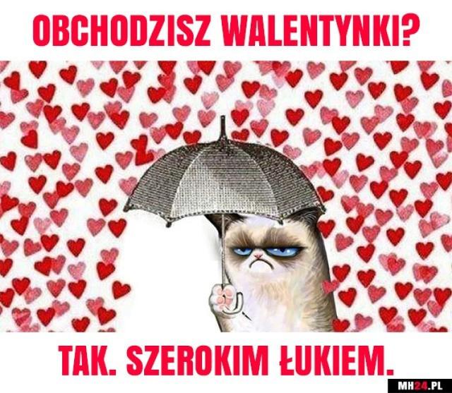Zobaczcie najciekawsze i najśmieszniejsze walentynkowe memy i demotywatory. Internauci nie zawodzą - przygotowali śmieszne obrazki i memy na Walentynki.