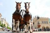 Koń przewrócił się pod Wawelem. Z gorąca i ze zmęczenia?