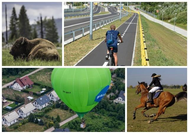 Jak spędzać aktywnie czas na Podlasiu? Przedstawiamy najciekawsze pomysły! Do wyboru mamy: lot balonem, jazda konno czy rowerem, sporty wodne i wiele innych. Każdy znajdzie coś dla siebie. Kliknij w galerię zdjęć, by sprawdzić najlepsze pomysły na aktywny wypoczynek w Podlaskiem.
