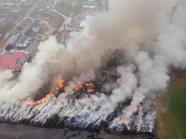 Rok 2020 u strażaków z powiatu chełmińskiego. Na slajdach przypominamy najważniejsze zdarzenia