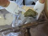 Krajenka: Przewozili w samochodzie 5 tysięcy tabletek ecstasy i 5 kg marihuany [WIDEO, ZDJĘCIA]