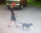 Gniezno. Poszukiwany właściciel psa. Zwierzę ugryzło dziewczynkę chorą na mukowiscydozę