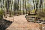 W Parku Olszyna powstał drewniany taras widokowy. Czy to najpiękniejszy projekt z Budżetu Obywatelskiego?