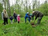 Akcja sadzenia drzew w parku na Lipowicy w Przemyślu [ZDJĘCIA]