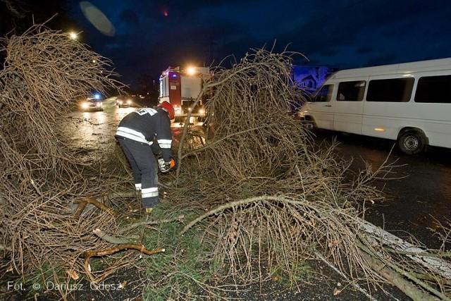W Wałbrzychu i na terenie powiatu wałbrzyskiego trwa usuwanie szkód po wyrządzonych przez porywisty wiatr