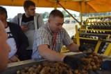 Kościerzyński Dzień Ziemniaka. Rolnicza impreza w niedzielę 19 września ZDJĘCIA