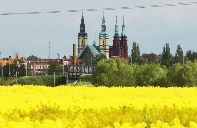 Tak wygląda Legnica widziana z wysokości ulicy Bobrowej.