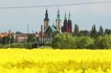 Tak wygląda Legnica widziana z wysokości ulicy Bobrowej [ZDJĘCIA]