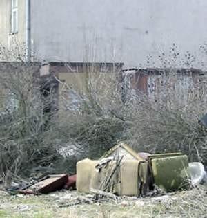 Jak widać, ktoś urządził sobie śmietnisko praktycznie w centrum miasta.   Fot. Agnieszka FILIPOWICZ