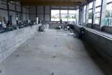 Szkoła w Kokoszkach. Trwa budowa basenu i boisk [ZDJĘCIA]