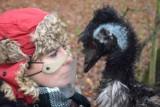 Książę William w poznańskim zoo? Nie, to jego nowy, uroczy lokator Willy. Zobacz zdjęcia sympatycznego emu