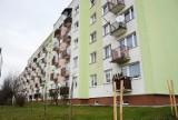 Tak wygląda jedno z największych osiedli mieszkaniowych w Kraśniku. Zobacz zdjęcia z os. Koszary