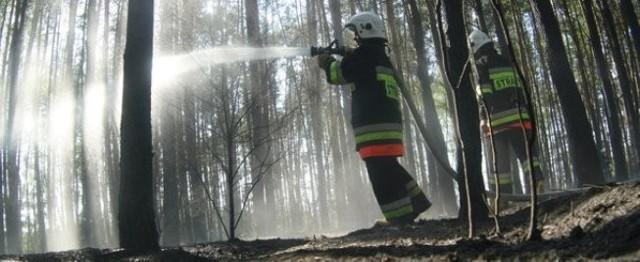 Łza nie ugasi ognia!