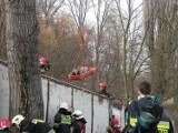 Gniezno: Strażacy ćwiczą na wypadek poważnego wypadku komunikacyjnego