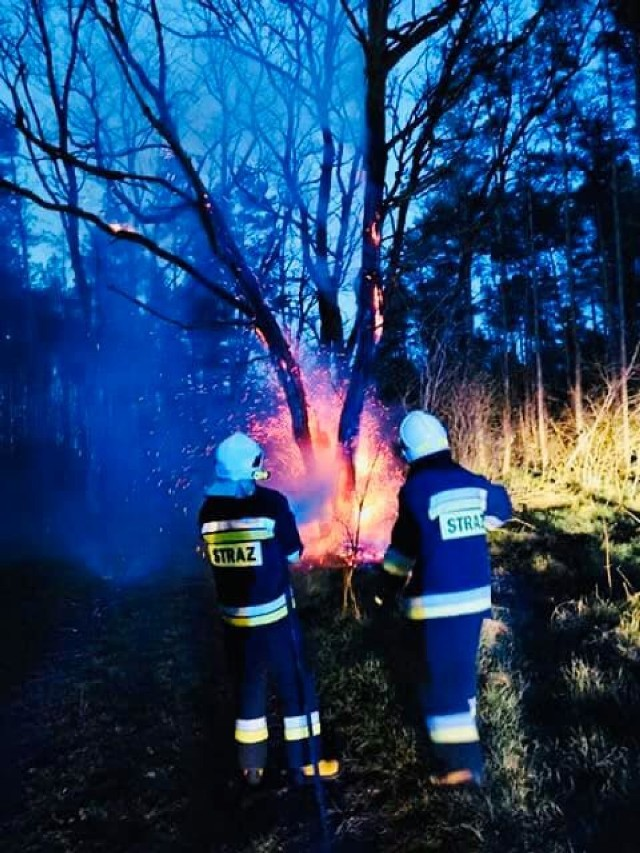 Pożar lasu nad jeziorem Piaszczystym