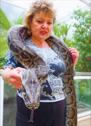 Egzotyczne węże są w modzie. Są także niebezpieczne. Dlatego trzeba je rejestrować, foto: Bruno Fidrych