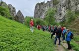 Na wycieczkę z PTTK: Spotkanie pod Sokolicą na zakończenie akcji