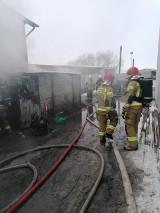 Pożar w Wilkowie Polskim. Z ogniem walczyli strażacy z dwóch powiatów