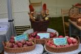 Jabłoniowy zawrót głowy w Łęknicy. To już dzisiaj!