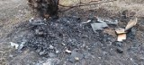 Poszukiwani sprawcy spalenia budek dla kotów w Zielonkach