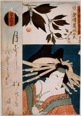 Onnagata - fenomen teatru kabuki - prowadzenie Robert Andrzej Dul