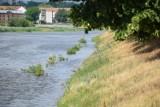 Stan Odry w Słubicach coraz wyższy. Park Nadodrzański zalany, a wraz z wodą wypłynęły śmieci