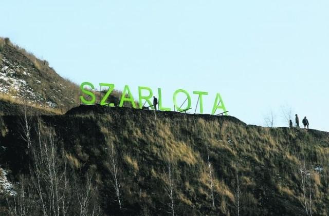 Co widać ze szczytu najwyższej hałdy w Europy, Szarloty w Rydułtowach?