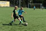 Pleszew Cup 2021. Młodzi piłkarze rywalizowali na Stadionie Miejskim