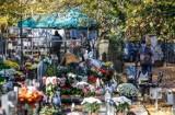 Pomorskie cmentarze znów otwarte! Mieszkańcy regionu odwiedzają groby swoich bliskich