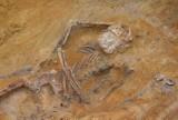 W Zielonej Górze znaleziono szkielety bez czaszek. Kto odciął głowy? Dlaczego szczątki trzech osób były do siebie przytulone?